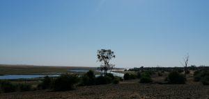 Besuch Chobe Nationalpark